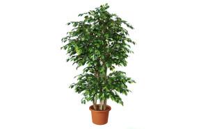 artificial-plant-ficus-benjamin-boschetto-h9308